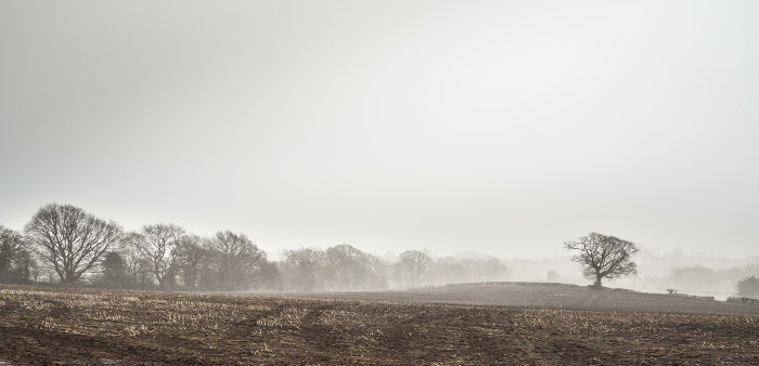 A mystical stubble field, from the footpath at the Severn View end of Birchwood Road, by Vivienne Davies