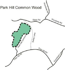 Parkhill Common Wood
